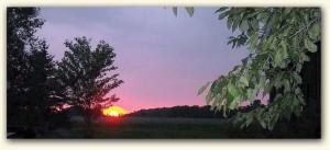 Amazing Sunsets1