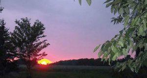 Amazing Sunsets2 1