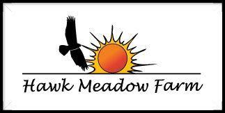 Loving mushrooms at Hawk Meadow Farms